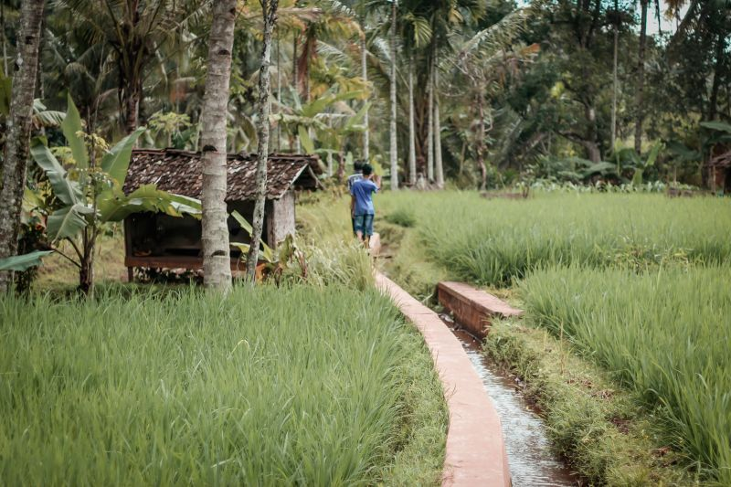 Poverty (and Happiness?) in the Villages of Lombok